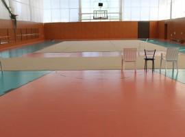 Художественная гимнастика (малый зал)