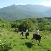 Конные туры и прогулки по горному КРЫМУ